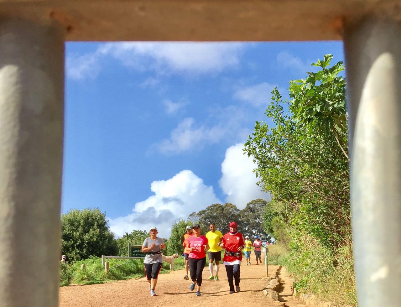 Nature Run 1